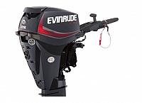 EVINRUDE E25DGTE